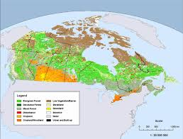 canadian map 1 land cover map of canada 2005