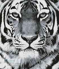 tiger portrait black white cross stitch pattern tiger