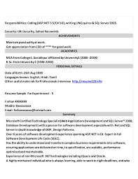 Sql Server Resume Sample by The Best Resume Samples For Chief Executive Officer Ceo
