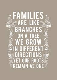 families are like branches on a tree we grow in different