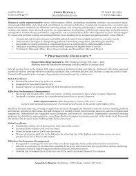 sales resumes exles sales representative resume sle resume sles