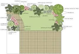 darwin landscape design darwin landscaping garden ideas garden plans