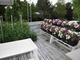 landscape garden lawn edging ideas design idea as wells also