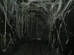 Haunted Backyard Ideas Haunted House Hallway Ideas Design Decoration