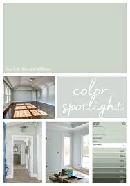 sherwin williams sea salt color best 25 sw sea salt ideas on