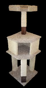 Free Diy Cat Tree Plans by Best 20 Cat Tower Plans Ideas On Pinterest Cat Trees Diy Easy