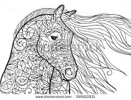 horse head coloring stock images royalty free images