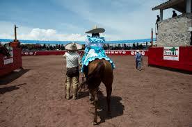 muskelschwäche beine 20 minuten auf dem pferd körperliche grenzen überwinden news