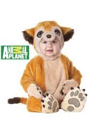 Halloween Jumpsuit Costumes Halloween California Costumes Meerkat Infant Baby Jumpsuit Costume