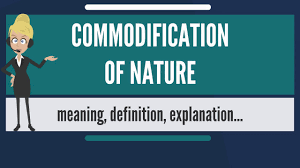 What Does Rugged Individualism Mean What Is Commodification Of Nature What Does Commodification Of