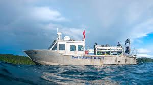 volunteers give vets a day on the water freedom boat club reef trip schedule dive vacations that count reef