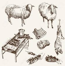 sheep breeding set of sketches on a white background royalty free