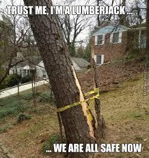 Lumberjack Meme - lumberjack memes best collection of funny lumberjack pictures