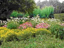 outdoor flower ideas backyard garden design backyard flower garden