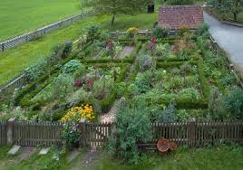 beautiful vegetable garden pictures qqnb decorating clear