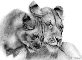 wildlife art pet portrait u0026 wildlife artist danguole serstinskaja