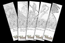 bookmarks colour wild volunteer