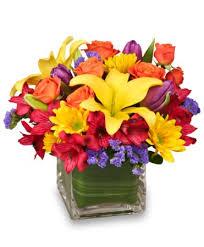 Ashland Flowers - sun infused flowers summer arrangement in ashland mo alan
