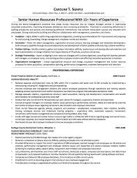 Resume Examples For Sales Manager 100 Resume Templates For Sales Best Computer Repair