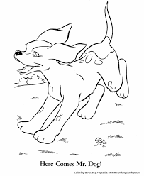 coloring pages spot pet coloring pages free printable pet coloring pages spot