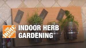 indoor herb gardens tips and tricks youtube