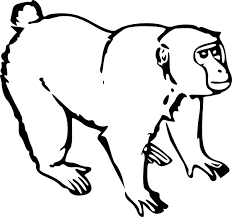 outline of a monkey