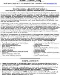 Technical Architect Sample Resume by Senior Technical Architect Resume Sample Resume Samples