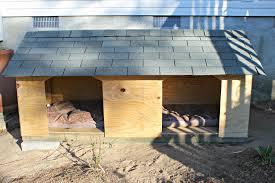 49 Elegant Outdoor Cat House Plans House Floor Plans Concept