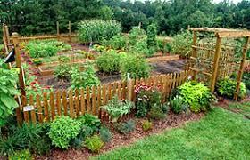 Backyard Beehive Gardening Resources Ekar Farm