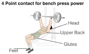Chest Flat Bench Press How To Perform Bench Press Exercise For Bigger Chest Muscles