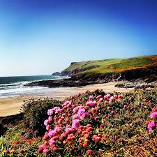 Holiday Cottages Port Isaac by Simply Owners Direct Contact For This Cottage In Port Isaac