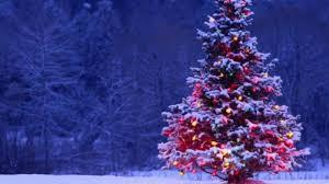 black friday deals on christmas lights black friday amidst x mas cheer