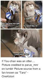 Good Day Sir Meme - 25 best memes about otter picture otter picture memes