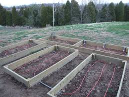 Raised Planter Beds by Pinterest Farm Gardens Heated Raised Gardening Beds Bar J