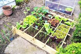 easy gardening ideas easy garden ideas australia u2013 sdgtracker