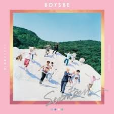 boy photo album seventeen 2nd mini album boys be ver hide