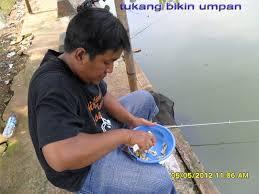 cara membuat umpan mancing ikan mas harian umpan mancing ikan mas murah meriah get strike now