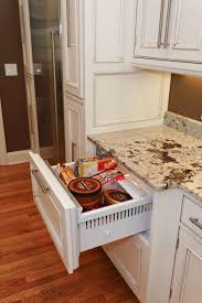 Kitchen Cabinets With Inset Doors 75 Best Granite Images On Pinterest Kitchen Cabinets Kitchen