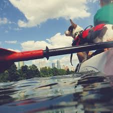 Texas travel contests images 230 best austin views images austin tx austin jpg