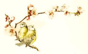 bird on a branch clipart