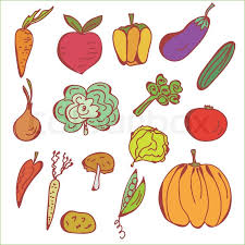 doodles sketch of vegetables stock vector colourbox
