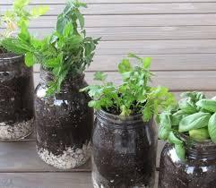 diy and how to indoor herb garden windowsill ideas no 36 u2013 design