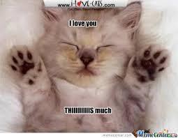 I Love You This Much Meme - i love you thiiiiiiis much by infinityjay1 meme center