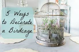 How To Decorate A Birdcage Home Decor 5 Ways To Decorate A Birdcage Momtique Kendra Williams Diy