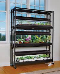 grow lights and stands