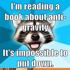 Reading Memes - animals reading books advice animals memes im reading a book about