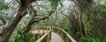 A nature lover 39 s itinerary jekyll island activities itineraries