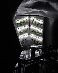 hydroponic wine bottle wall garden at student bar urban gardens
