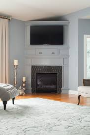 elegant gray owl benjamin moore mode other metro traditional