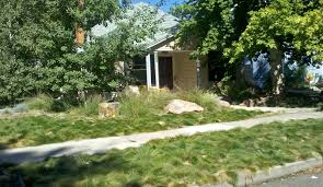 Front Yard Landscaping Ideas Without Grass Small Front Yards Backyard Ideas Without Grass For Dogs Thorplc